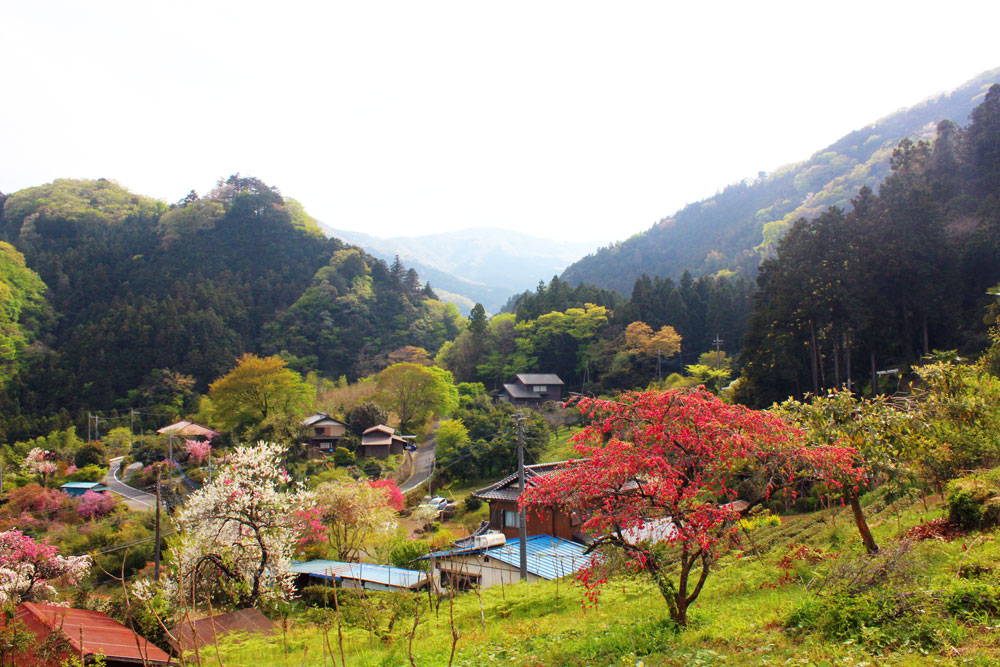 ARTokigawa風景